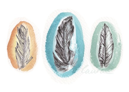 Feather illustration, Illustratorlaura on Etsy
