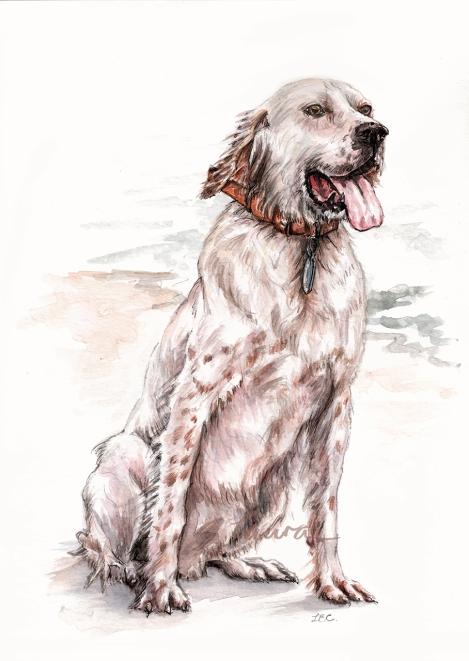 Custom dog portait