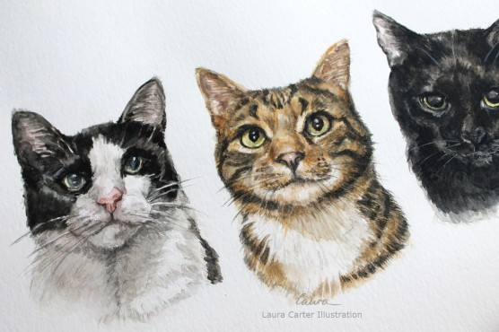 Cat portrait, Laura Carter Illustration