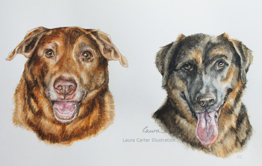 Dog portrait, Laura Carter Illustration