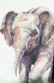 Elephant painting by illustratorlaura