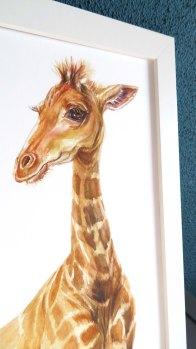 Baby giraffe, print by illustratorlaura