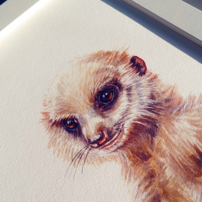 Meerkat illustration fine art print
